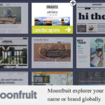 Moonfruit explorer your name or brand globally