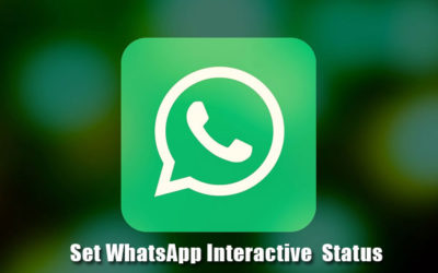 set WhatsApp Interactive status