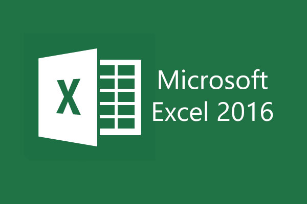 How to edit multiple person on an excel sheet 2016?